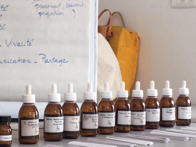 L'odorat : huiles essentielles